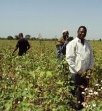 Rencontre gouvernement secteur privé au Burkina Faso